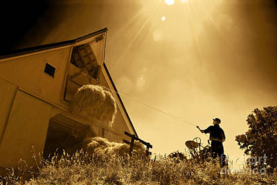 Photograph - Hoisting Hay by Phil Cardamone