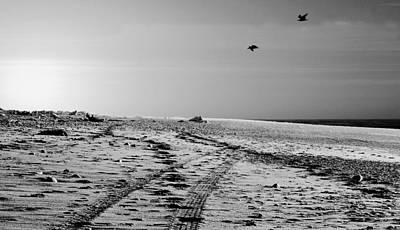 Photograph - Hokitika Beach by David Rich