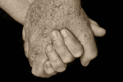 Photograph - Hold My Hand by Nikolyn McDonald