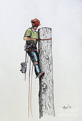 Pear Tree Mixed Media - Hold On Tight Tree Surgeon At Work Ideal Christmas Present by Gordon Lavender