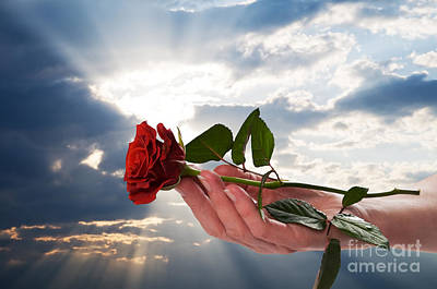 Offer Photograph - Holding Red Rose In Romantic Scenery by Michal Bednarek