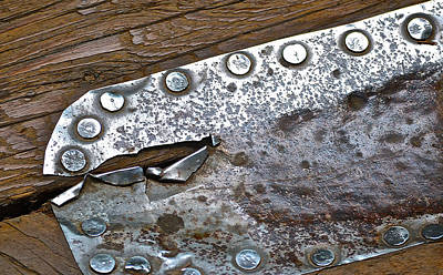 Hole Patch 3 John Muir Woods Art Print by Bill Owen