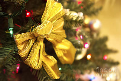 Photograph - Holiday Bow by Thanh Tran