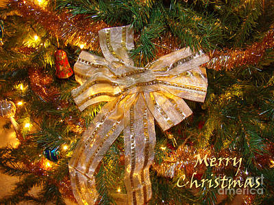 Photograph - Holiday Greetings by Sue Melvin