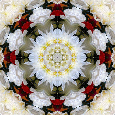 Photograph - Holiday Kaleidoscope I by Dawn Currie