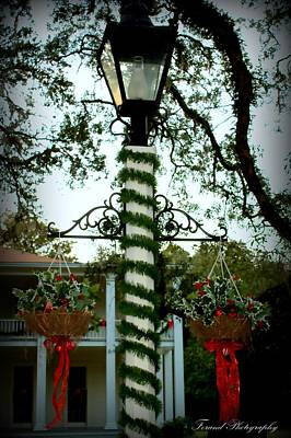 Photograph - Holiday Lamp Post by Debra Forand