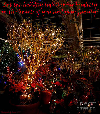 Photograph - Holiday Lights Greeting Card by Gena Weiser