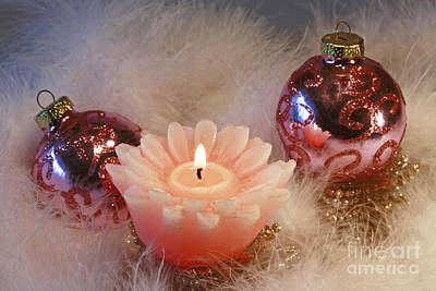 Holiday Moments Print by Inspired Nature Photography Fine Art Photography