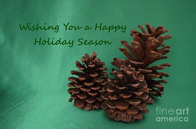 Photograph - Holiday Pine Cones by Mary Deal