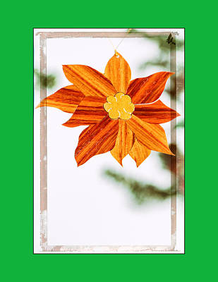 Photograph - Holiday Pointsettia Art Ornament In Green by Jo Ann Tomaselli