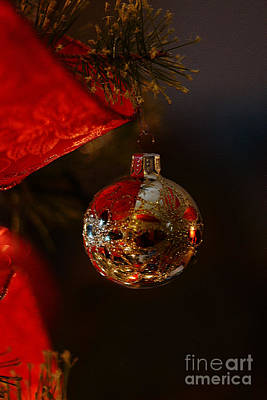 Photograph - Holiday Season by Linda Shafer