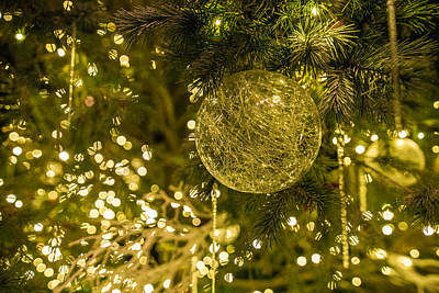Longwood Gardens Photograph - Holidays by Kristopher Schoenleber