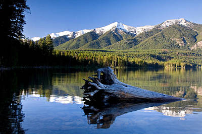 Photograph - Holland Lake Reflections by Jack Bell