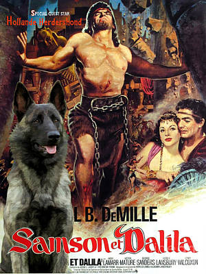 Painting - Hollandse Herdershond - Dutch Shepherd Art Canvas Print - Samson And Delilah Movie Poster by Sandra Sij