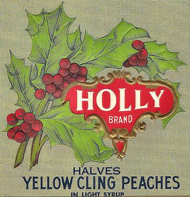 Holly Brand Yellow Cling Peaches Art Print by Studio Art