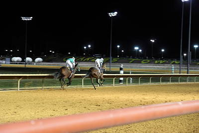 Hollywood Casino At Charles Town Races - 121221 Print by DC Photographer