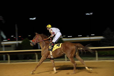 Charles Photograph - Hollywood Casino At Charles Town Races - 121229 by DC Photographer