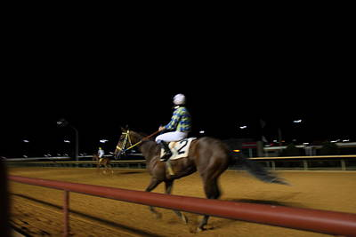 Charles Photograph - Hollywood Casino At Charles Town Races - 121230 by DC Photographer