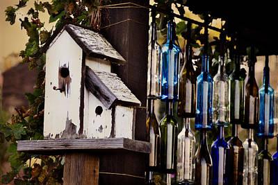 Wine Bottles Photograph - Home Amongst The Vines by Amy Medina