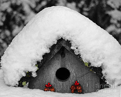 Photograph - Home For The Holidays by Chuck Flewelling