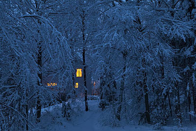 Photograph - Home In Snowy Woods by Alan L Graham