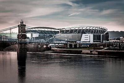 Photograph - Home Of The Bengals by Ron Pate