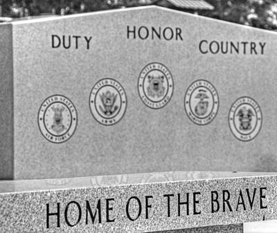 Home Of The Brave Art Print by Heather Allen