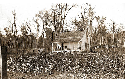 Home Of The Cotton Picker, Jackson, William Henry Art Print by Litz Collection