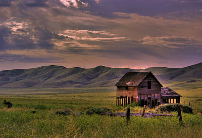 Photograph - Home On The Range by Dale Stillman