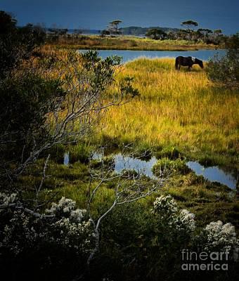 Home On The Range Art Print by Robert McCubbin