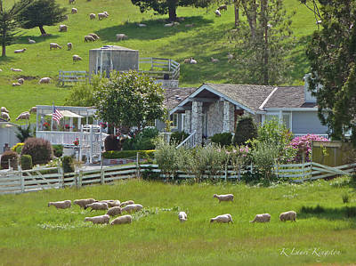Art Print featuring the photograph Home Sheep Home by K L Kingston