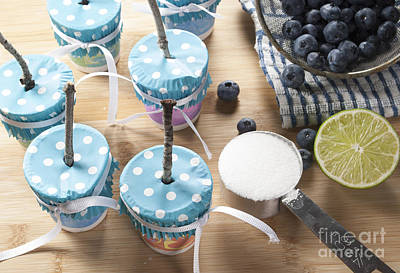 Homemade Blueberry Popsicles Print by Juli Scalzi