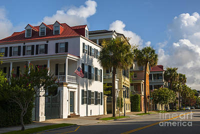 Whimsical Flowers - Homes of Charleston by Dale Powell