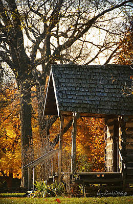 Photograph - Homestead Cabin Porch by Lena Wilhite