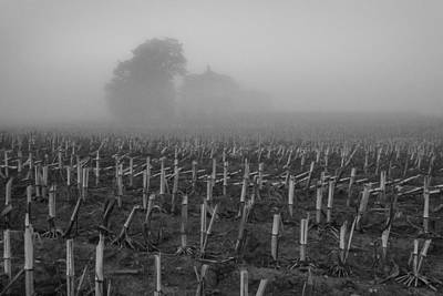 Photograph - Homestead Fog by Bill Pevlor