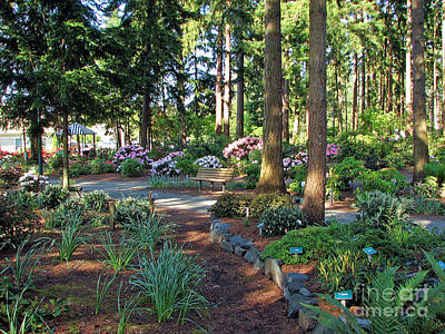 Photograph - Homestead Park Gardens by Chris Anderson