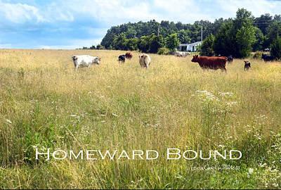 Photograph - Homeward Bound by Lena Wilhite