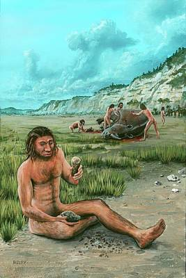 Homo Heidelbergensis Creating A Flint Axe Art Print by Richard Bizley