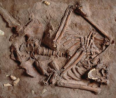 Homo Neanderthalensis Kebarah Burial Site Art Print by Natural History Museum, London