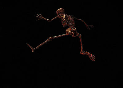 Photograph - Homo Sapien Leaping by Connie Fox