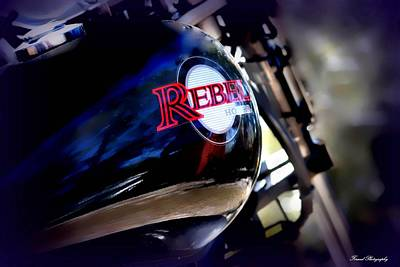 Photograph - Honda Rebel by Debra Forand