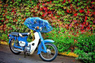 Handlebar Photograph - Honda With Umbrella by Olivier Le Queinec