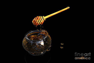Digital Art - Honey And Ladle by William Ladson