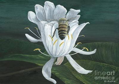 Bee On Flower Painting - Honey Bee by Tom Blodgett Jr