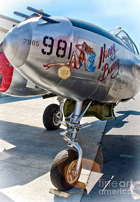 Honey Bunny - P-38 Airplane Art Print by Gregory Dyer