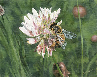 Painting - Honeybee On Clover by Lucinda V VanVleck