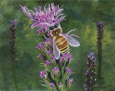 Painting - Honeybee On Liatis by Lucinda V VanVleck