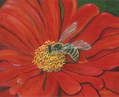 Painting - Honeybee On Red Zinnia by Lucinda VanVleck