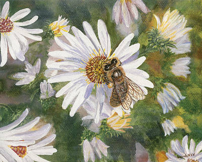 Painting - Honeybee On White Aster by Lucinda V VanVleck