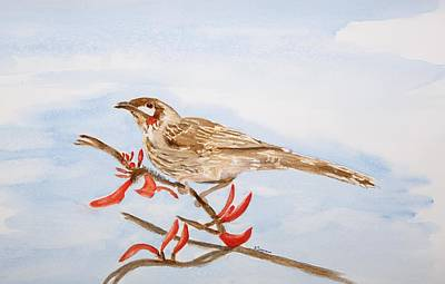 Painting - Honeyeater  by Elvira Ingram